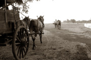 Wagon Wheel Prints - Ready for Sundown Print by Toni Hopper