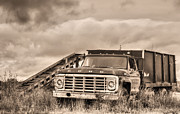 Ready For The Harvest Sepia Print by JC Findley