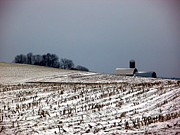 Cornfield Originals - Ready for Winter by Christian Mattison