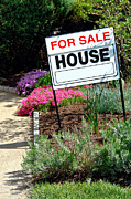 Broker Photos - Real Estate For Sale Sign and Garden by Olivier Le Queinec