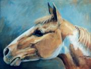 Pinto Paintings - Rebel Chief     Paint Horse by JoAnne Corpany