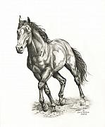 Wild Horse Drawings - Rebel by Lorrie Kalena