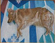 James Sparks Paintings - Reclining Dog Series by James Sparks