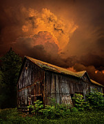 Natural Light Framed Prints - Recluse Framed Print by Phil Koch