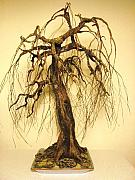 Nelbert  Flores - Recycled Bonsai Tree...
