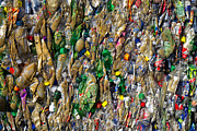 Recycled Plastic Bottles Print by David Buffington