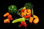 Hot Peppers Posters - Red and Green Peppers Poster by Don Regar