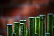 Bamboo Fence Prints - Red and Green Too Print by Karen Ulvestad