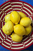 Baskets Photo Framed Prints - Red and white basket full of lemons Framed Print by Garry Gay