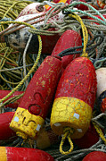Crab Traps Photos - Red and Yellow Buoys by Carol Leigh