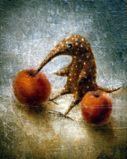 Surrealistic Prints - Red Apples Print by Lolita Bronzini