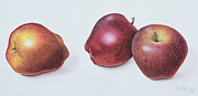 Decor Painting Posters - Red Apples Poster by Margaret Ann Eden