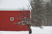 Red Barn. New England Prints - Red Barn Print by Andrew Bear