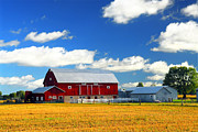 Wooden Barns Prints - Red barn Print by Elena Elisseeva