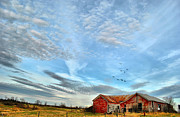 Abandoned Barn Prints - Red Barn Print by Emily Stauring