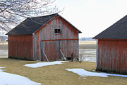 Rural Indiana Prints - Red Barn in Indiana Print by Suzanne Gaff