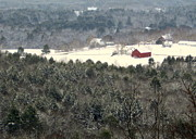 Winter Photo Photos - Red Barn in Snow by Benjamin Williamson