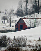 Grace Dillon Prints - Red Barn in Snow Print by Grace Dillon