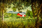 Red Barn Prints Framed Prints - Red Barn Framed Print by Kathy Jennings