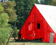 Red Barn Print by Linda  Smith