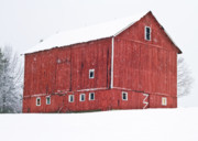 Barn Covered In Snow Framed Prints - Red Barn Snow Storm  Framed Print by Tim  Fitzwater