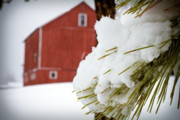 Barn Covered In Snow Framed Prints - Red Barn Study IV Framed Print by Tim  Fitzwater