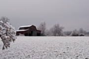 Tennessee Barn Prints - Red Barn Under Snow 2 Print by Douglas Barnett
