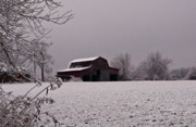 Tennessee Barn Prints - Red Barn Under Snow Print by Douglas Barnett