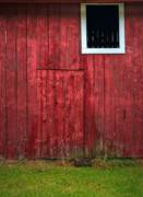 Old Wood Framed Prints - Red Barn Wall Framed Print by Steve Gadomski