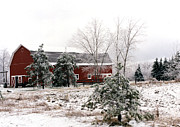 Red Barn Prints Posters - Red Barn Winter Scene Snow Landscape Poster by Kathy Fornal