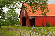 Tennessee Barn Prints - Red Barn with Orange Roof 1 Print by Douglas Barnett