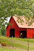 Tennessee Barn Prints - Red Barn with Pink Roof Print by Douglas Barnett