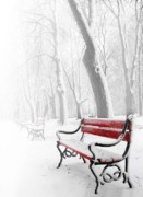 Seasonal Posters - Red bench in the snow Poster by  Jaroslaw Grudzinski