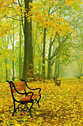 Autumn Scene Digital Art Framed Prints - Red benches in the park Framed Print by Jaroslaw Grudzinski