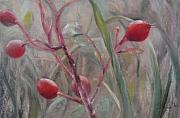 Plants Pastels Prints - Red Berries II Print by Sabina Haas