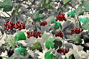 Wall Art Greeting Cards Digital Art Originals - Red Berries by James Steele