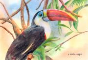 Toucan Paintings - Red-billed Toucan by Arline Wagner