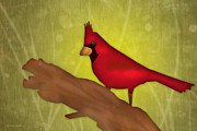 Nature  Digital Art Posters - Red Bird Poster by Melisa Meyers