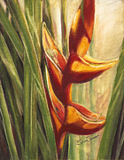 Bird Of Paradise Flower Pastels - Red Bird of Paradise by Shera Summer