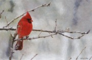 Snow Digital Art Posters - Red Bird of Winter Poster by Jeff Kolker
