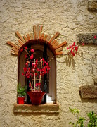 France Doors Posters - Red Bougainvillea in Window Poster by Lainie Wrightson
