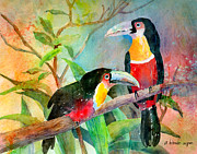 Toucan Paintings - Red-breasted Toucans by Arline Wagner