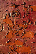 Peeling Paint Walls Posters - Red Brick Poster by John Greim
