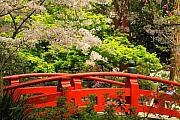Walkway Digital Art - Red Bridge Springtime by James Eddy