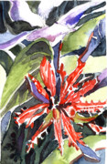 Computer Drawings Prints - Red Cape Plumbago  Print by Mindy Newman