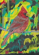 Cardinals Drawings - Red Cardinal by Don  Gallacher