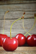 Sour Photos - Red cherries on barn wood by Sandra Cunningham