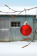 Ball Photo Prints - Red christmas ball Print by Sandra Cunningham