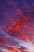 Colour Acrylic Prints - Red Clouds Acrylic Print by Garry Gay