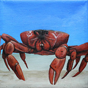 Red Crab Print by Cindy D Chinn
